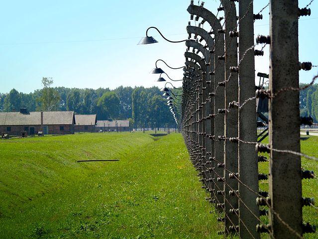 Le urla di Auschwitz, resteranno sempre impresse dentro di me