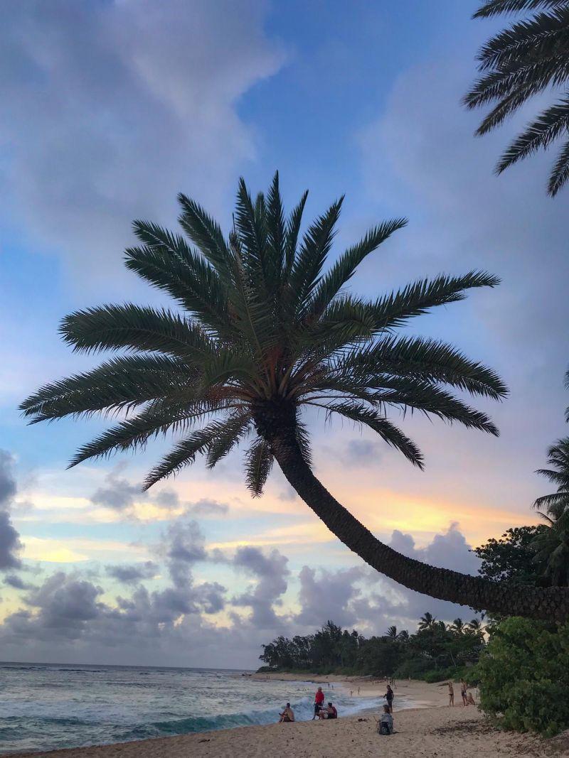Girovagare per le Hawaii