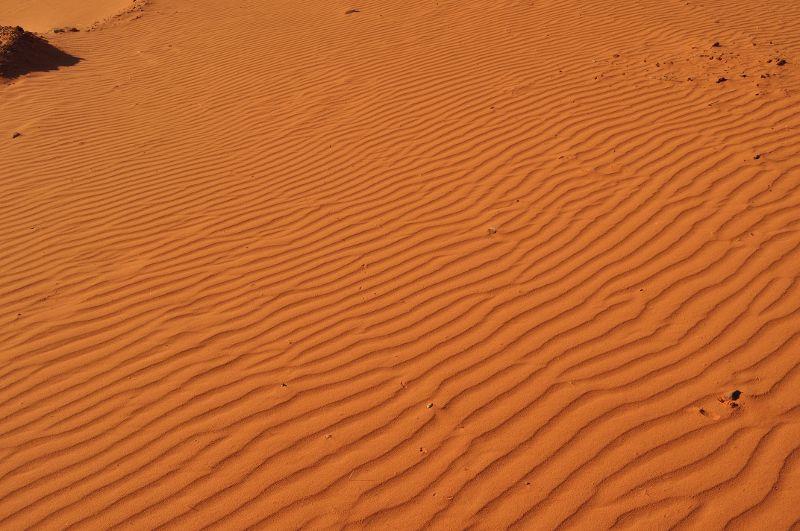 arrivare low cost da Wadi Musa al Wadi Rum