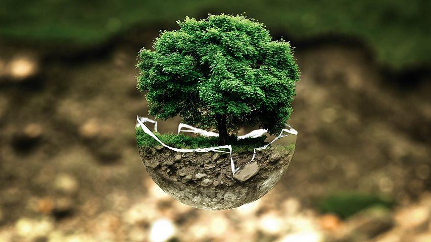 Il mio punto di vista sull'inquinamento ambientale